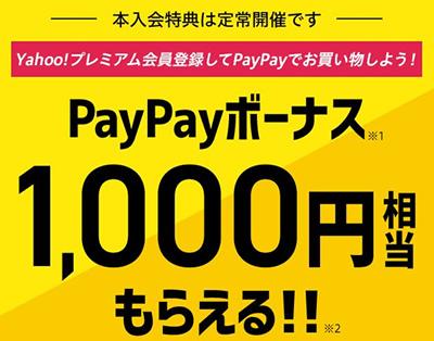 PayPayボーナス1,000円相当もらえる!!