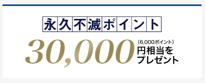 永久不滅ポイント30,000円相当(6,000ポイント)をプレゼント